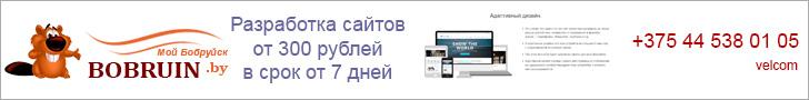 Создание и разработка сайтов от 300 рублей в срок от 7 дней